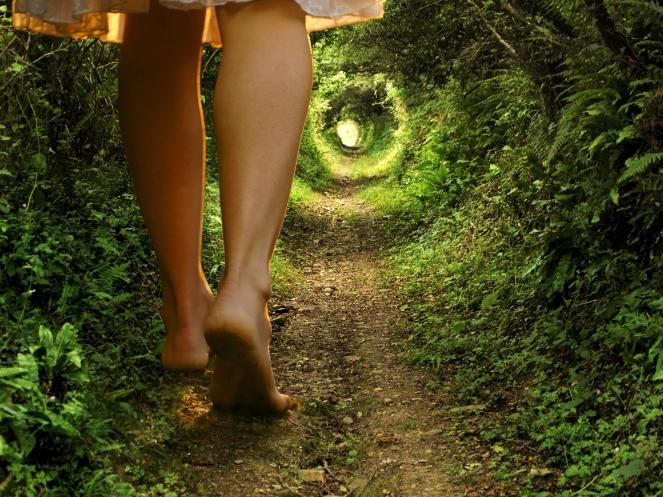 shutterstock_Fairy Tale Journey